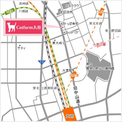 キャットファーム大谷の地図