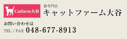 お問い合わせ048-677-8913